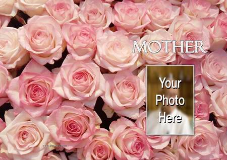 PINK ROSE outside personalised card